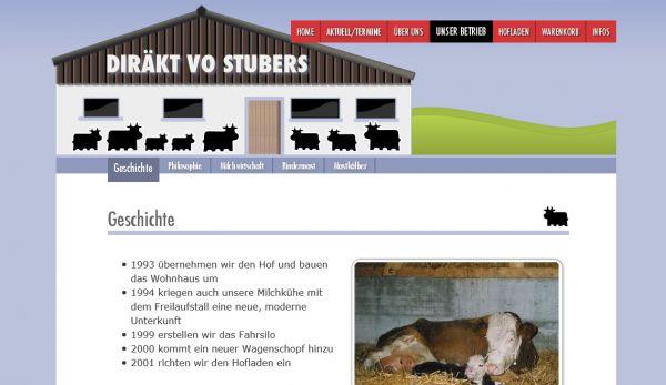 http://www.diraekt-vo-stubers.ch